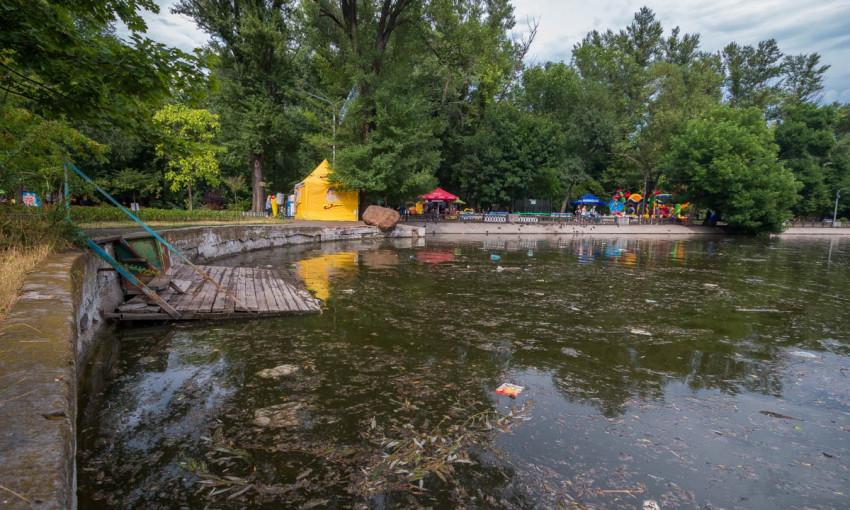 Днепряне недовольны состоянием озера в парке Глобы